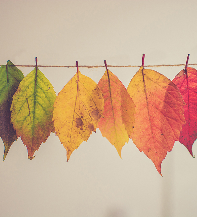 Changing leaves, keep clients during merger